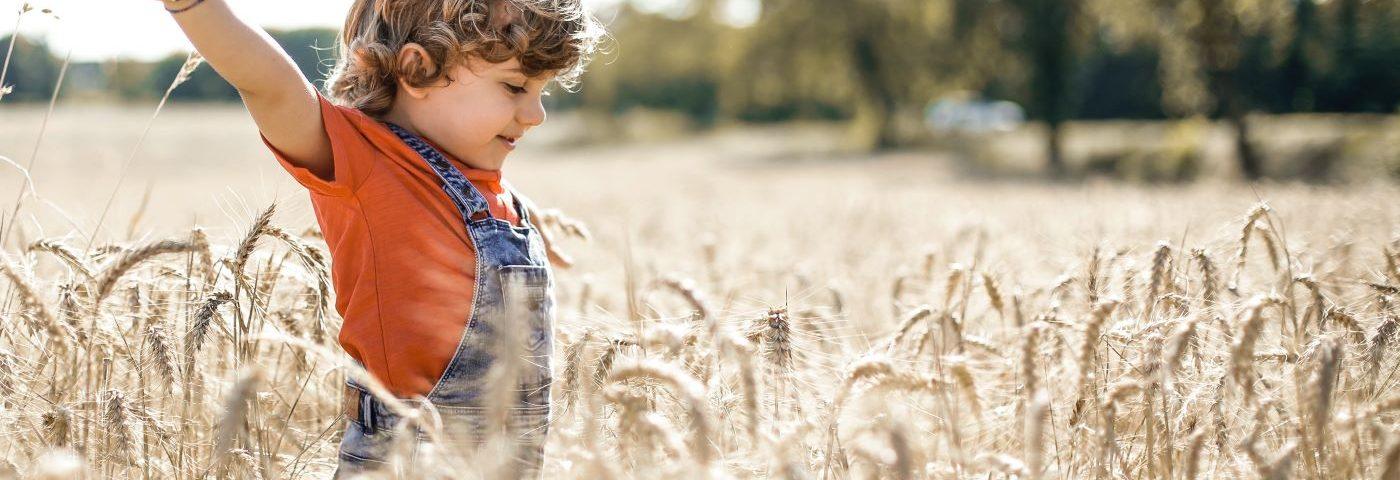 Öt lépés a globális élelmezési kihívások megoldásához